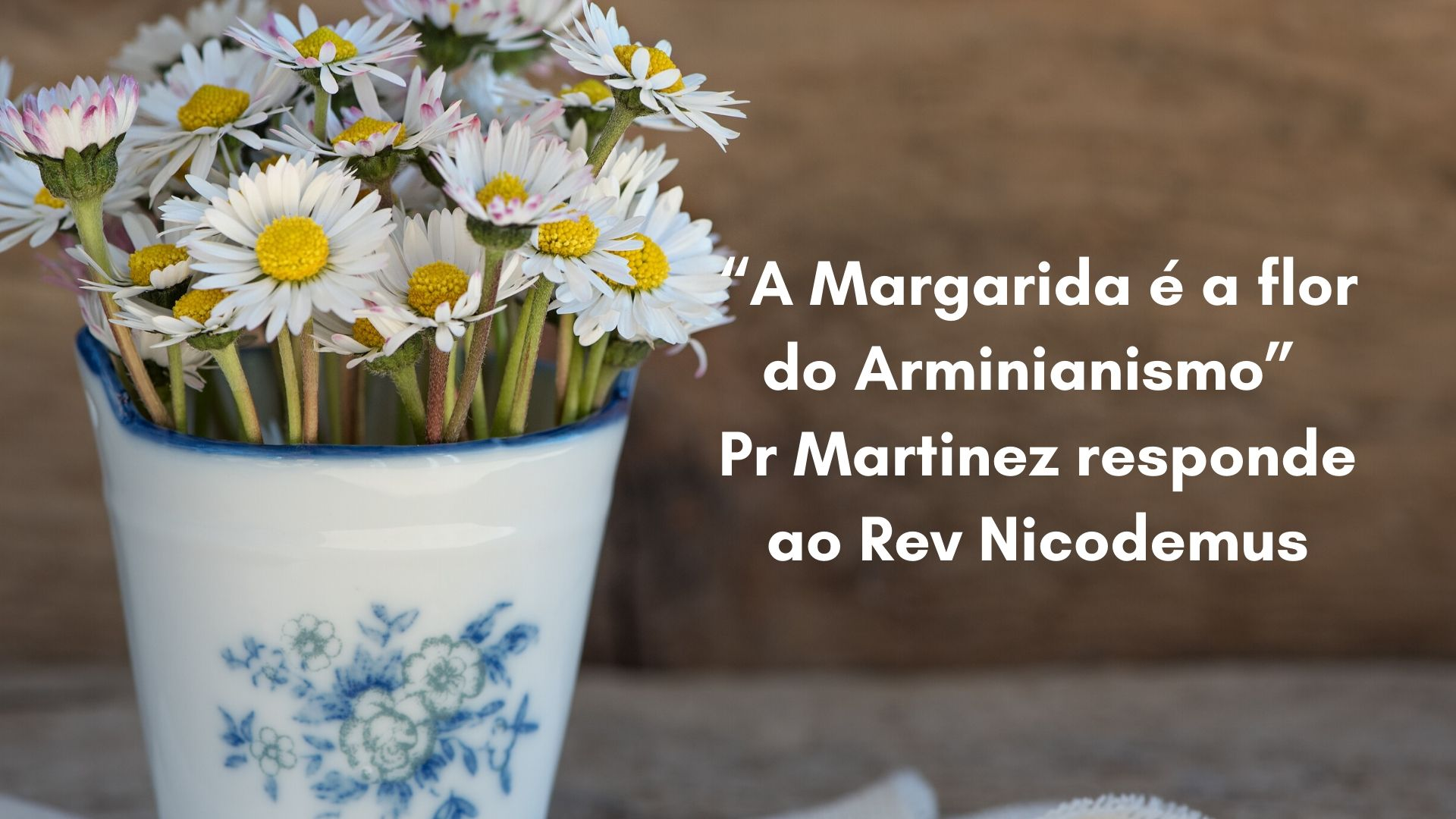 A Margarida é a flor do Arminianismo?